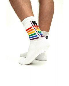 Sk8erboy Pride Socks Mister B